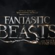 FantasticBeasts_FairUse